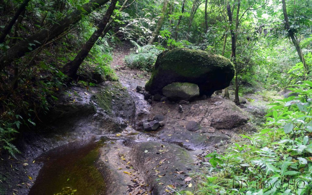 El Imposible National Park Cerro Leon Trail at Ixcanal River
