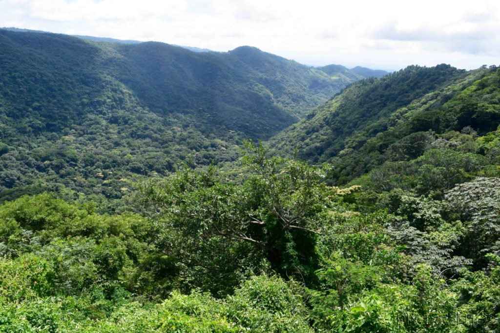 El Imposible National Park Mirador Madre Cacao Lookout