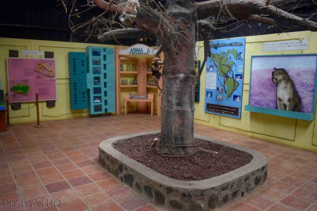 El Imposible National Park Mixtepe Visitor Center