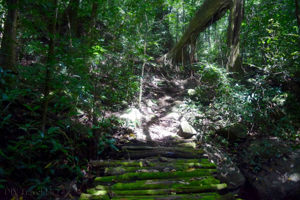 El Imposible National Park Piedra Sellada Hiking Trail