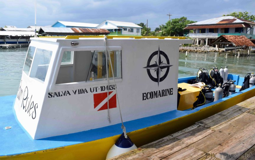 Gunter's Ecomarine Dive Shop Utila