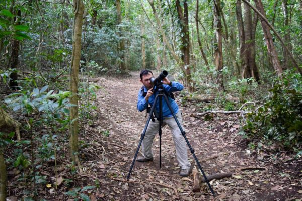 Oscar Nasua Tours Nature Walks