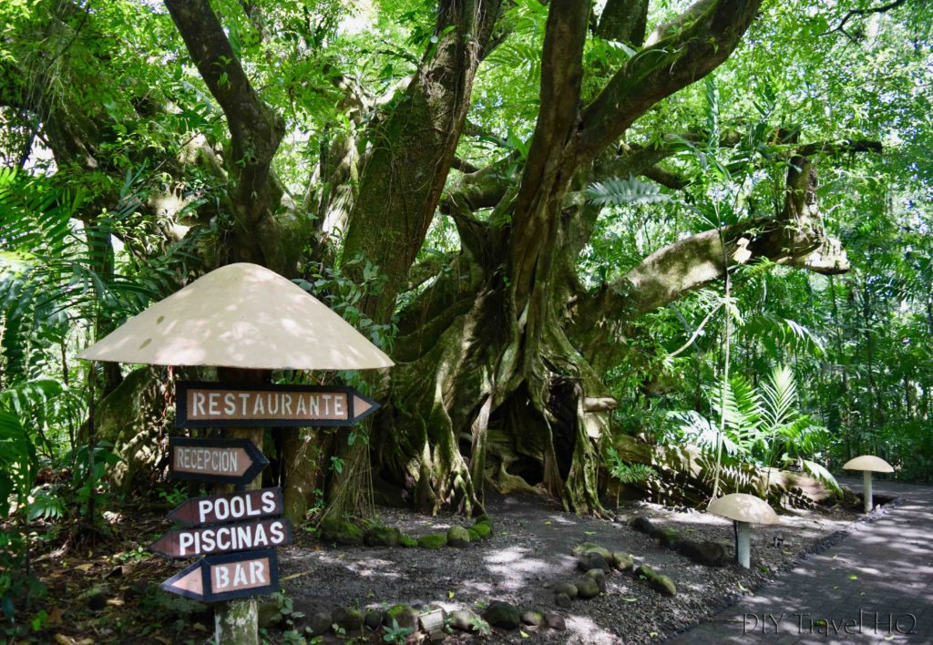 EcoTermales Hot Springs Pathways
