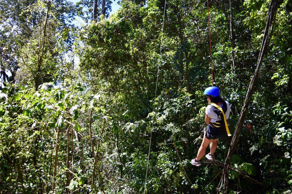 Tarzan Swing Monteverde