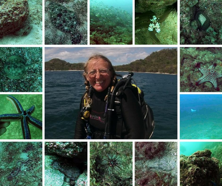 Sirenas Diving in Playas del Cocos Costa Rica