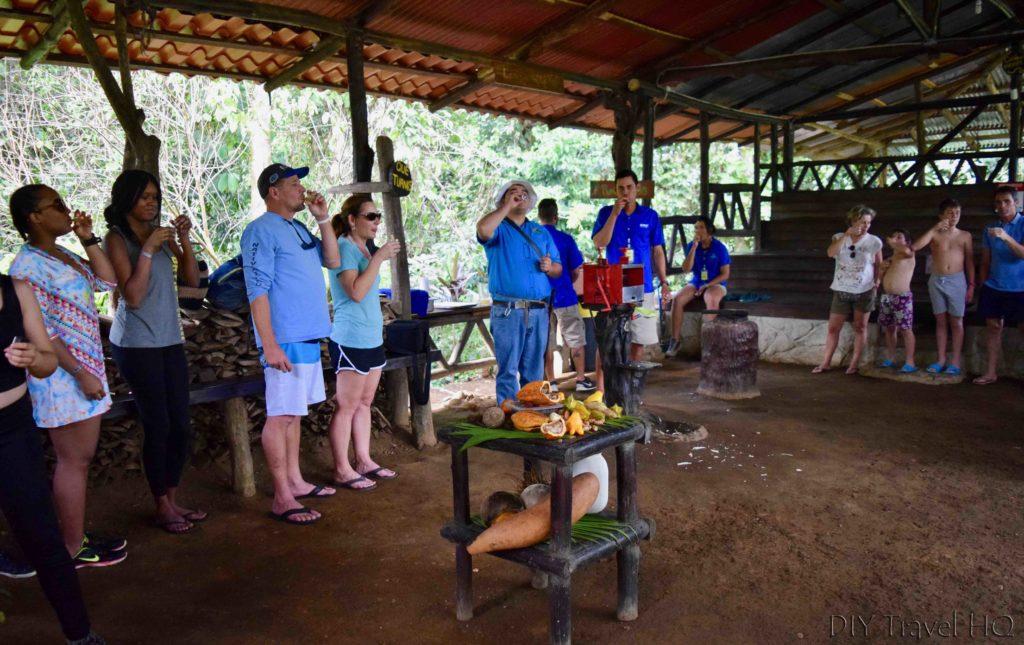 Vida Campesina Alcoholic Sugarcane Shot