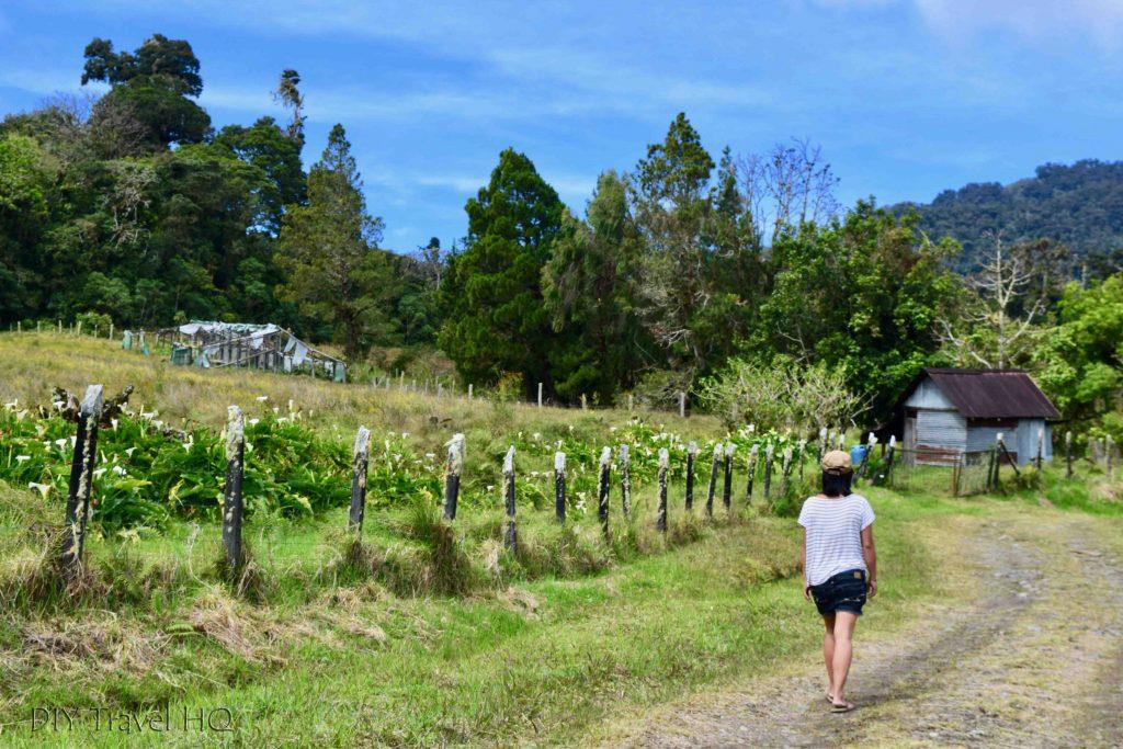 Quetzal Trail Boquete