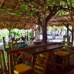 Playa 506 Hostel: Paradise on Cocles Beach, Puerto Viejo