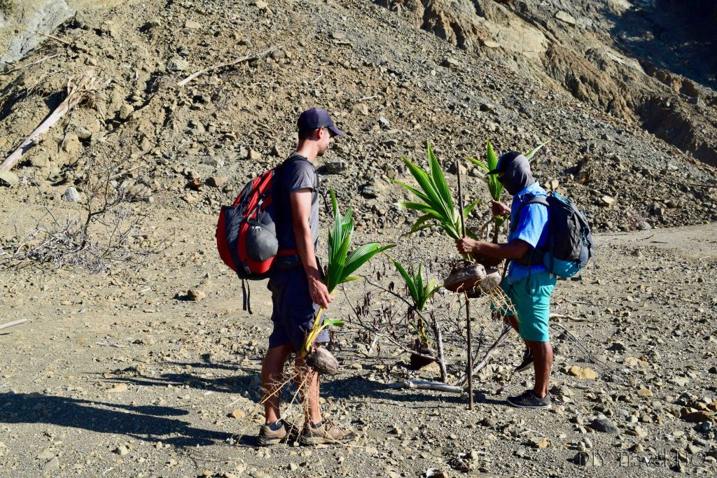 Surcos Tours Programa Corcovado Limpio