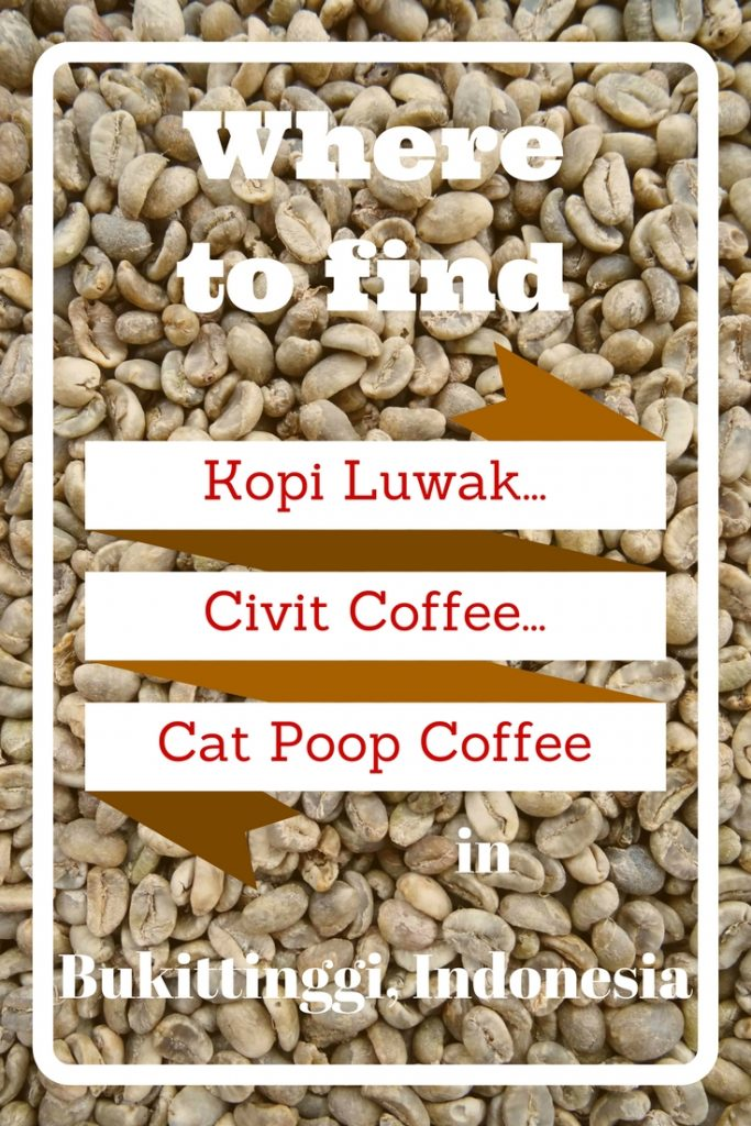 The world's most expensive coffee comes from the poo of the civet cat. In the highlands of Sumatra, civet cats eat and fully digest coffee aeans - its poo is then collected by farmers and villagers & sold to coffee plantations to make Kopi Luwak. Check out our post & learn about the full process, along with where to find authentic Kopi Luwak & exactly how to get there!
