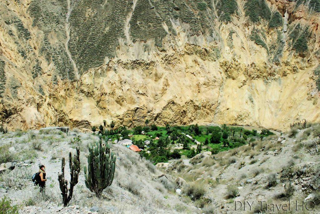 San Galle Oasis Peru