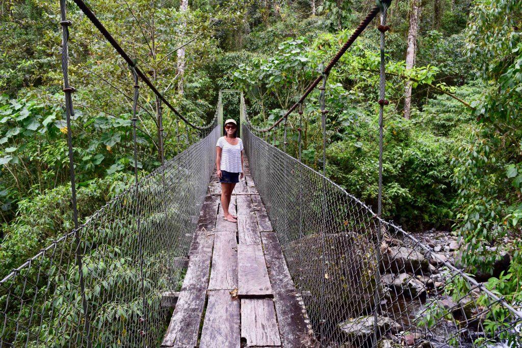 Sendero Los Quetzales Swing Bridge over Rio Caldera