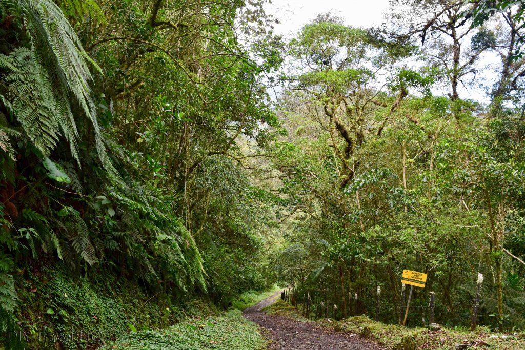 Start of Sendero Los Quetzales Trail