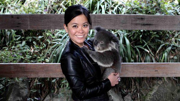 Cuddling a Koala