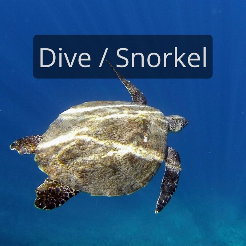 DIY Travel HQ Diving and Snorkeling Travel Blog Posts
