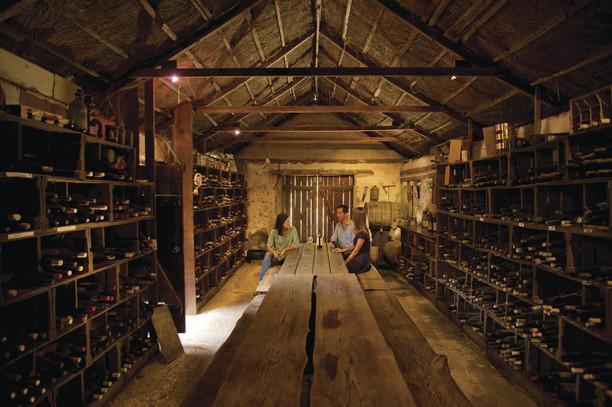 Coonawarra Cellar Door