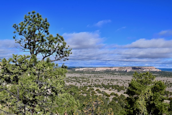New Mexico Hikes