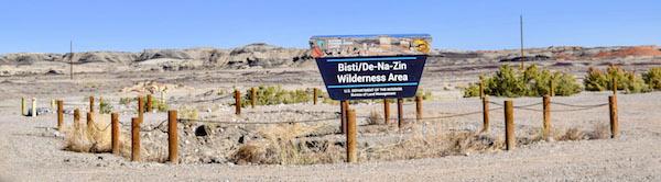 Bisti Badlands sign