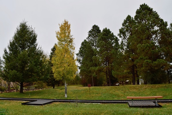 Smokey Bear Park grave site