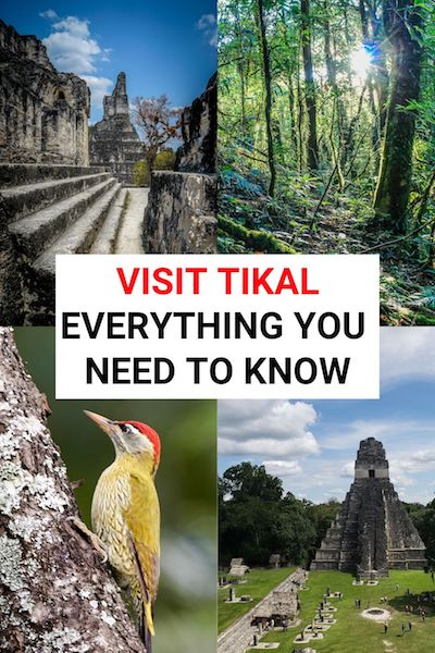 Visiting the Mayan ruins at Tikal, Guatemala is one of the best things to do in Flores. Check out our post to see our top Tikal pictures and find out all our top tips to help you plan your trip #tikal #guatemala #flores #centralamerica
