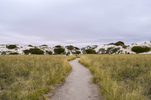 White sands trail