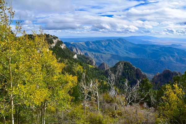 View of trees and mountains at Sandia Peak