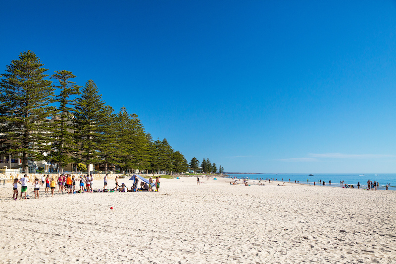 Sandy beach lined with trees - Best beaches in Adelaide