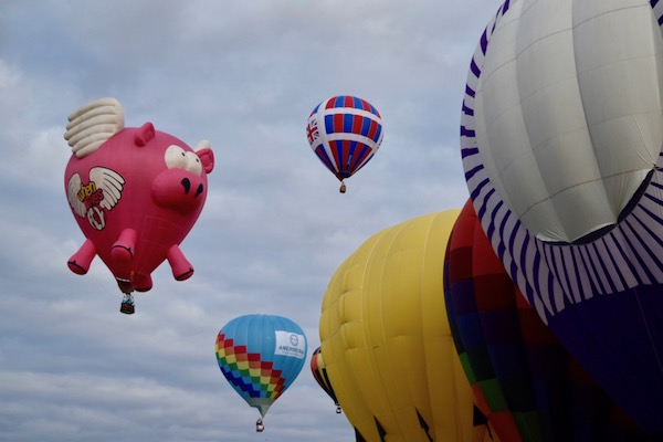 Albuquerque attractions - hot air balloons in the air