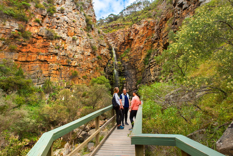 Boardwalk in front of cliffs and small waterfall - Adelaide hikes