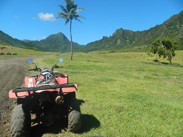 ATV in a field with mountains and palm tree - Oahu tours