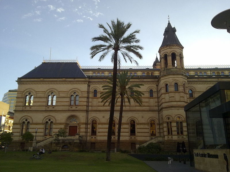Outside South Australian Museum with palm tree - What to do in Adelaide