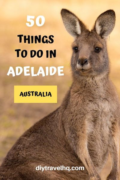 Things to do in Adelaide Australia | Adelaide Australia Beach | Adelaide Australia City | Adelaide Australia Destinations | Adelaide Australia Travel #adelaide #adelaideaustralia