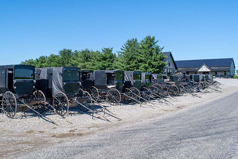 Amish Buggy Dealership